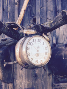 Rusty analogue alarm clock hanging on a branch | nextlevelwarrior.com